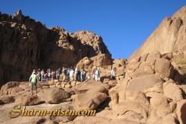 Berg Sinai Sharm Ausflug