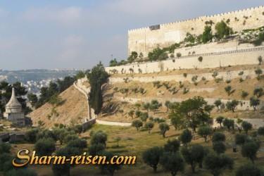 Sharm El Sheikh Jerusalem und Petra
