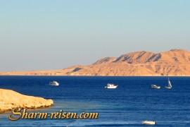 Tiran Insel Sharm El Sheikh Schnorcheln